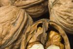 Walnoot recepten
