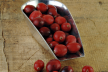 Cranberry-appelcompote recept