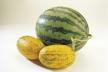 Meloen en gerookte kip recept