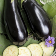 Terongs telor (aubergines met eiersaus) recept