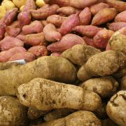 Zoete aardappelpuree recept