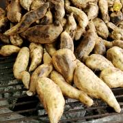 Zoete aardappelen op de bbq recept