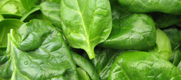 Nitriet en nitraat in onze voeding