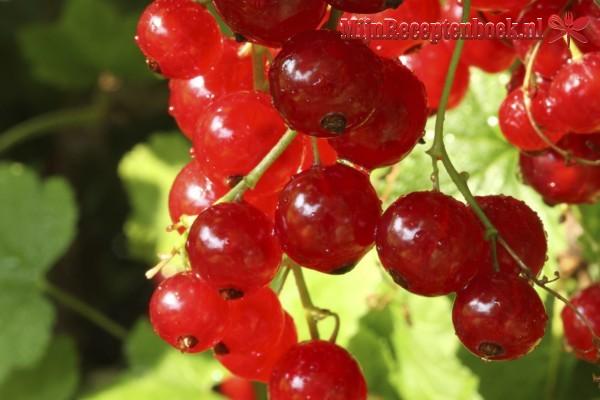Aardbeienkwark met rood fruit